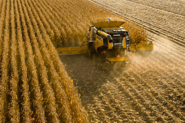 lexion combine working in the field