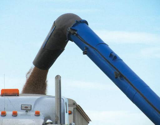 20″ Auger with Extra Reach