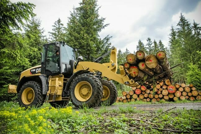 an outdoor shot of a cat machine carrying logs on a forklift