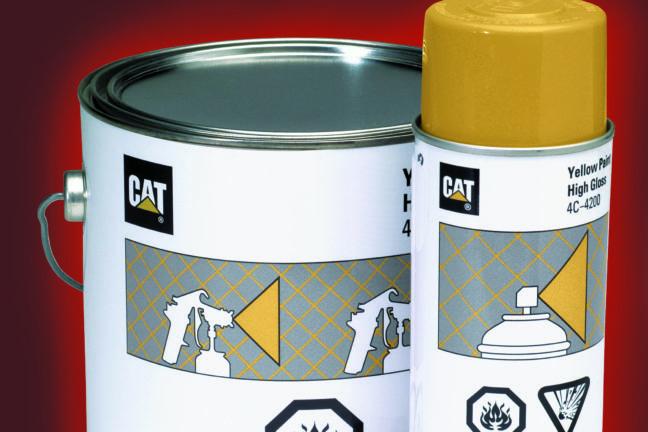 Cat Paint Special