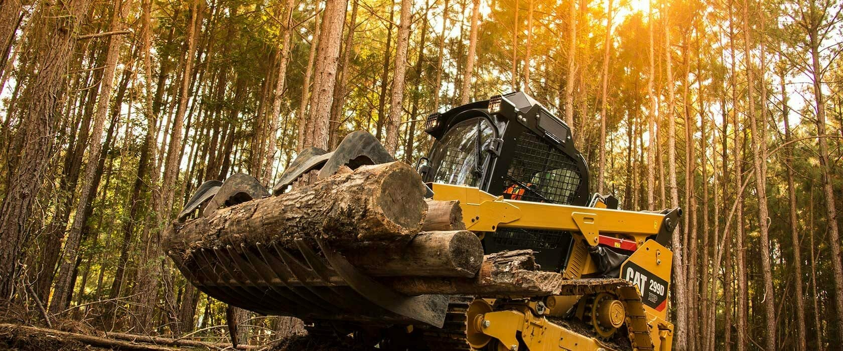 Cat Skid Steer in Forest